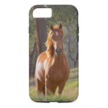 Beautiful Horse iPhone 7 case for Horse Lovers