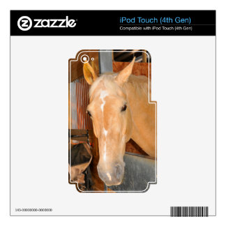 Beautiful horse iPod touch 4G decals