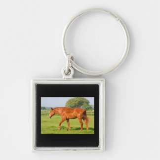 Beautiful horse keychain, gift idea Silver-Colored square keychain