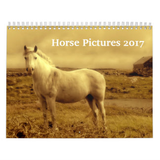 Beautiful Horse Pictures Images 2017 Calendar