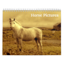 Beautiful Horse Pictures Images 2020 Calendar