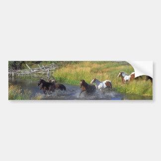 Beautiful Horse Ranch Destiny Nature Bumper Stickers