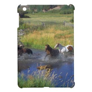 Beautiful Horse Ranch Destiny Nature iPad Mini Covers