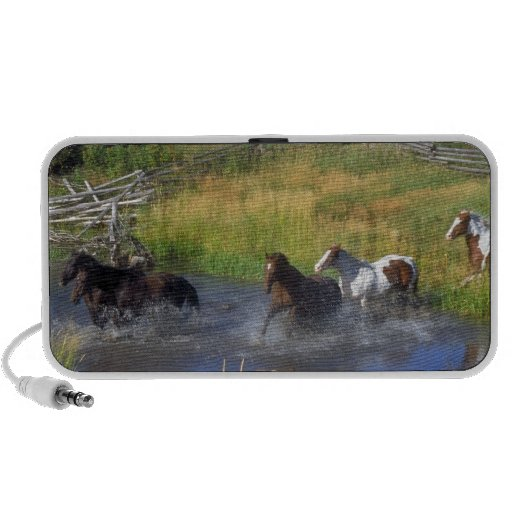 Beautiful Horse Ranch Destiny Nature Notebook Speakers