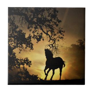 Beautiful Horse Running in the Sunset Art Tile