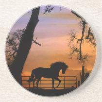 Beautiful Horse Sandstone Coasters