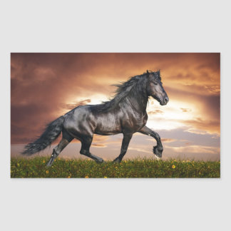 Beautiful Horse Rectangle Stickers