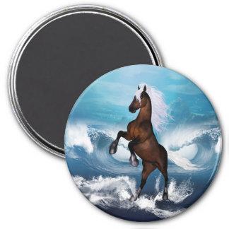 Beautiful horse with fridge magnet