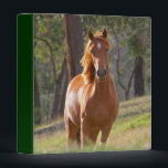 """Beautiful Horses 3 Ring Binder<br><div class=""""desc"""">Two different pictures of beautiful brown horses in grassy fields.</div>"""