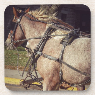 Beautiful Horses Coaster