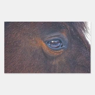 Beautiful Horse's Eye Equine Photo Rectangular Sticker