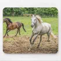 Beautiful Horses Mouse Pad