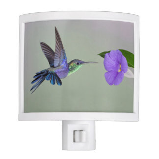 Beautiful hummingbird and flower design night light