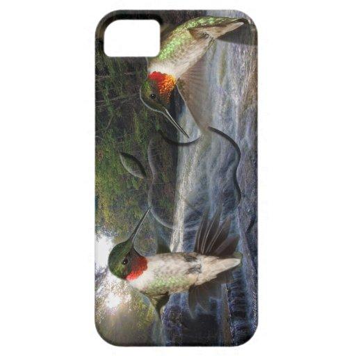 Beautiful Hummingbird - Iphone case iPhone 5 Cases