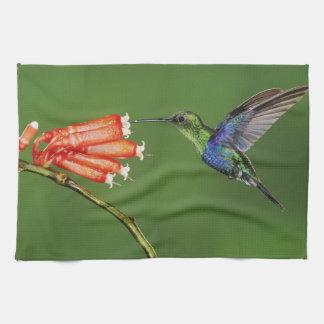 Beautiful Hummingbird Kitchen Towels