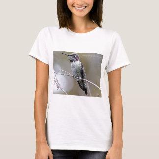 Beautiful Hummingbird Posing for photos T-Shirt