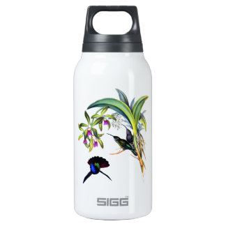 Beautiful Hummingbirds and Purple Orchids Insulated Water Bottle
