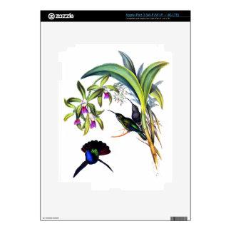 Beautiful Hummingbirds and Purple Orchids iPad 3 Skins