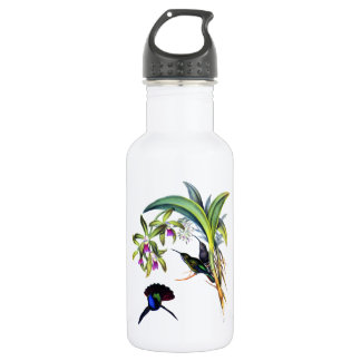 Beautiful Hummingbirds and Purple Orchids Stainless Steel Water Bottle