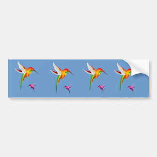 Beautiful Hummingbirds (Colibri) Bumper Sticker
