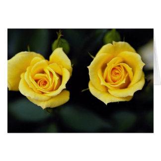Beautiful Hybrid Tea Rose 'Oregold' Greeting Card