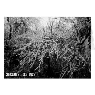 Beautiful Icy West Virginia Winter Landscape Card