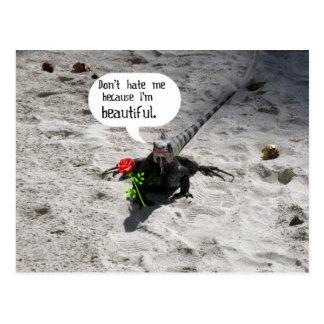 Beautiful Iguana #2 Postcard