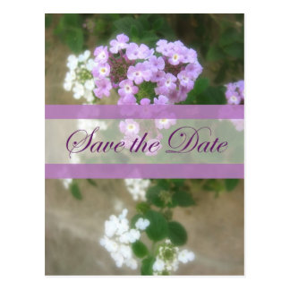 Beautiful Impression 2 Save the Date Wedding Postcard