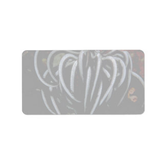 Beautiful Indo-Pacific feather star Address Label