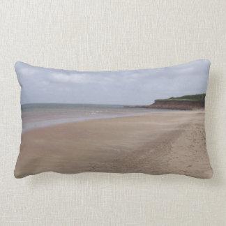 """Beautiful Isle of Somewhere"" Throw Pillow"