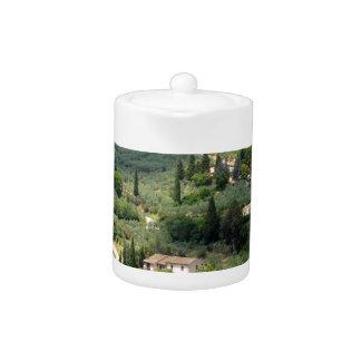 Beautiful italian landscape from Spello - Umbria