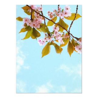 Beautiful Japanese cherry blossom Card