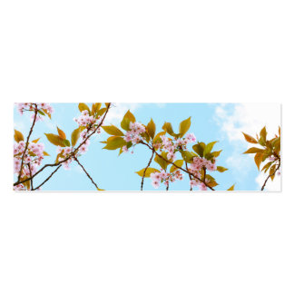 Beautiful Japanese cherry blossom Mini Business Card