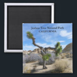"""Beautiful Joshua Tree Magnet! Magnet<br><div class=""""desc"""">Very Beautiful Joshua Tree National Park Magnet! Photo by MammaBASIL.</div>"""