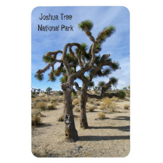 Beautiful Joshua Tree Premium Magnet! Rectangular Photo Magnet