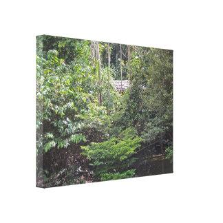 Beautiful Jungle Scene on the Napo River Canvas Print