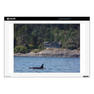"Beautiful Killer Whale Orca in Washington State 17"" Laptop Skins"