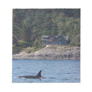 Beautiful Killer Whale Orca in Washington State Notepad