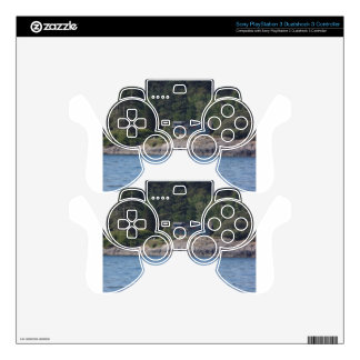 Beautiful Killer Whale Orca in Washington State PS3 Controller Decal