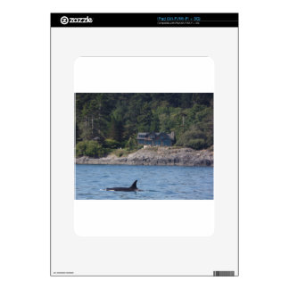 Beautiful Killer Whale Orca in Washington State Skin For The iPad