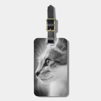 Beautiful Kitten Luggage Tag