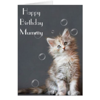 BEAUTIFUL KITTEN MUMMY GREETING CARD