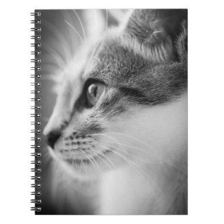 Beautiful Kitten Notebook