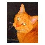 Beautiful kitty cat personalized letterhead