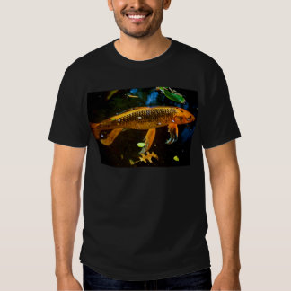 Beautiful Koi Tee Shirt