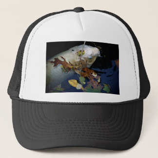 Beautiful Koi Trucker Hat