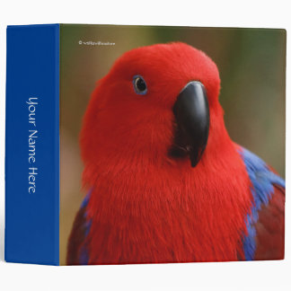 "Beautiful ""Lady in Red"" Eclectus Parrot Binder"