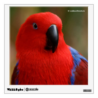 "Beautiful ""Lady in Red"" Eclectus Parrot Wall Decal"