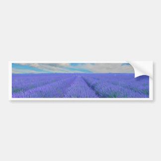 Beautiful landscape of lavender fields bumper sticker
