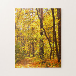 Beautiful Landscape - Road In Autumn Forest Jigsaw Puzzle